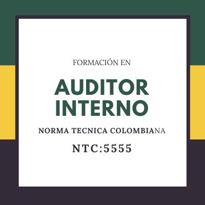 AUDITOR INTERNO NTC:5555